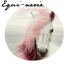 Equi-nerie