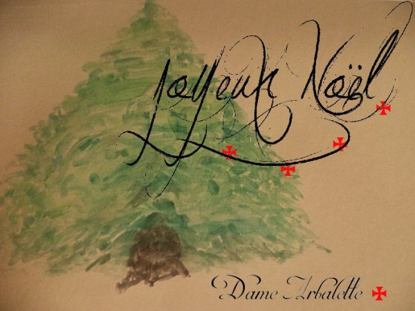 Je vous  souhaite un merveilleux Noël ^^