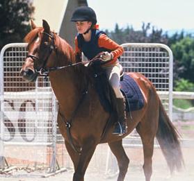 Lisa prancer grand galop - Grand galop le cheval volant ...