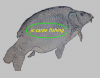 jc-carpe-fishing