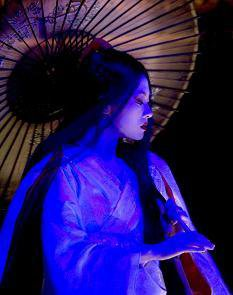 Geisha    leur histoire