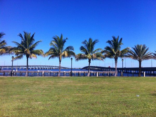 U.S.A. - PUNTA GORDA SHOW - FLORIDA  (Miami) 2013 - Judges and Landscapes ...