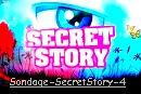 Photo de Sondage-SecretStory-4