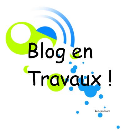 * SOMMAIRE* Blog en Travaux !