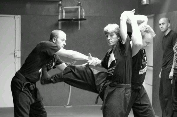 La spécificité du Ninjutsu du Bujinkan par rapport aux autres arts martiaux