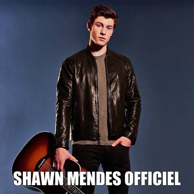 Bienvenue sur Shawn mendes Source Officiel