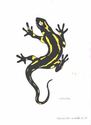 Dessin salamandre artstattooraph - Dessin de salamandre a imprimer ...