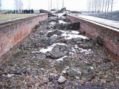 Chambre gaz une journ e auschwitz birkenau for Auschwitz chambre a gaz