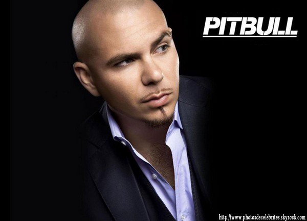 "PITBULL  ""BACK IN TIME"""