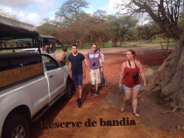 journ�e Gor�e et lac rose, demi journ�e la r�serve de bandia au d�part de la somone royal baobab