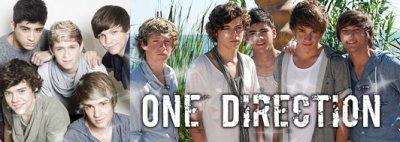 DES NEWS SUR L'ALBUM DE oNE dIRECTION !!!!
