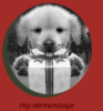 My-Nintendogs