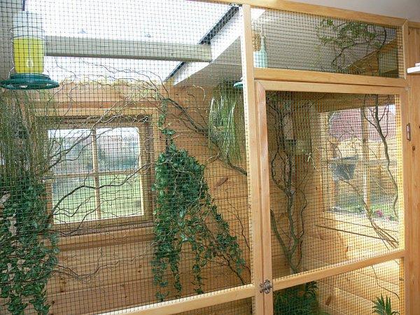 construction de ma voli re int rieure passionexotiques62. Black Bedroom Furniture Sets. Home Design Ideas