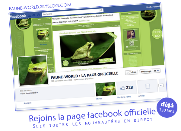 _______� �ARTICLE N�5 :�REJOINS LA PAGE FACEBOOK_______ � Post� le  29 Ao�t 2011 � Faune-world.skyblog.com