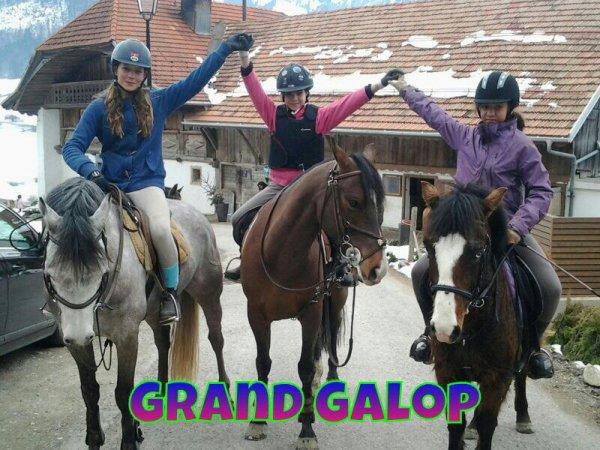 Blog de ecurie du borgeat page 3 blog de grand galop a - Grand galop le cheval volant ...