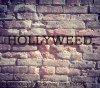 HOOLLYWEED