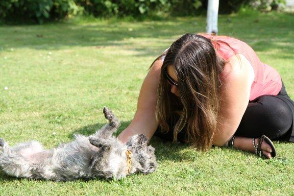 plus q'une passion un metier ( les animaux ) mon parcours