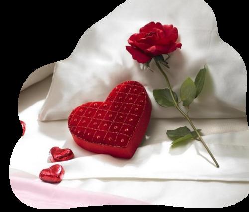 Bonne semaine à tous mes amies (is) .........merci à vous pour votre gentillesse ....!