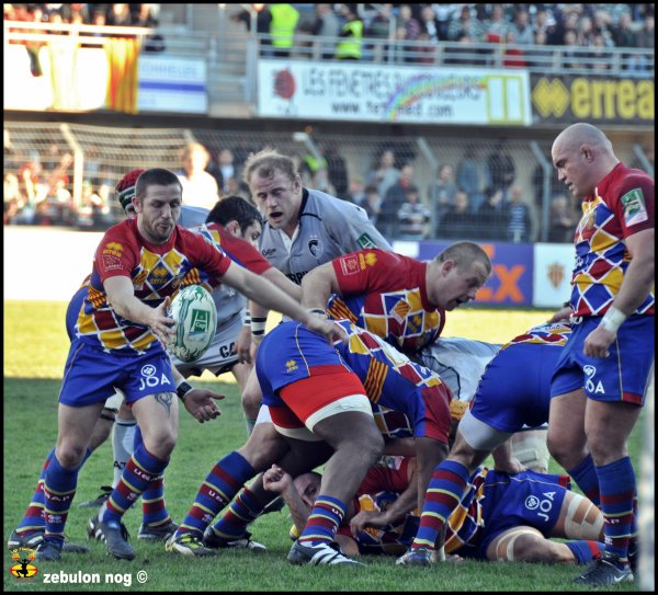USAP -Leicester Tigers