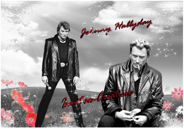 Mes nouvelles cr�ations : JOHNNY HALLYDAY
