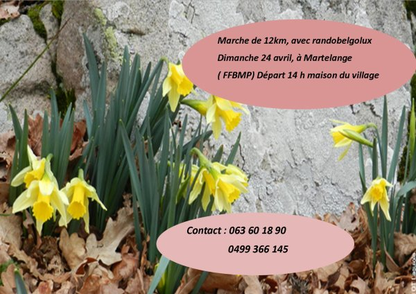 Martelange, 24 avril (marche FFBMP)