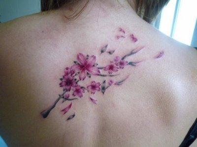 Cerisier tatouage - Fleur de cerisier tatouage ...