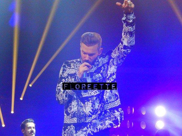 17 Avril 2015, R.E.D. Tour au Zénith de Lille. Photos (2)