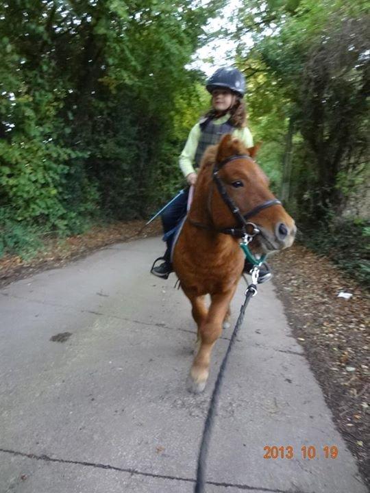 balade � poney