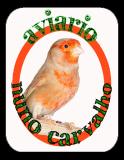 Photo de aviarionunocarvalho