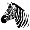 AkuNamAtaTa57