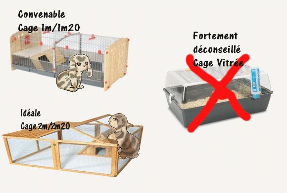 Info nac lapins 2 l 39 hygi ne et l 39 habitation ptite for Cage lapin nain exterieur