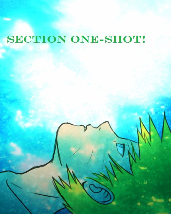 Section One-Shot!
