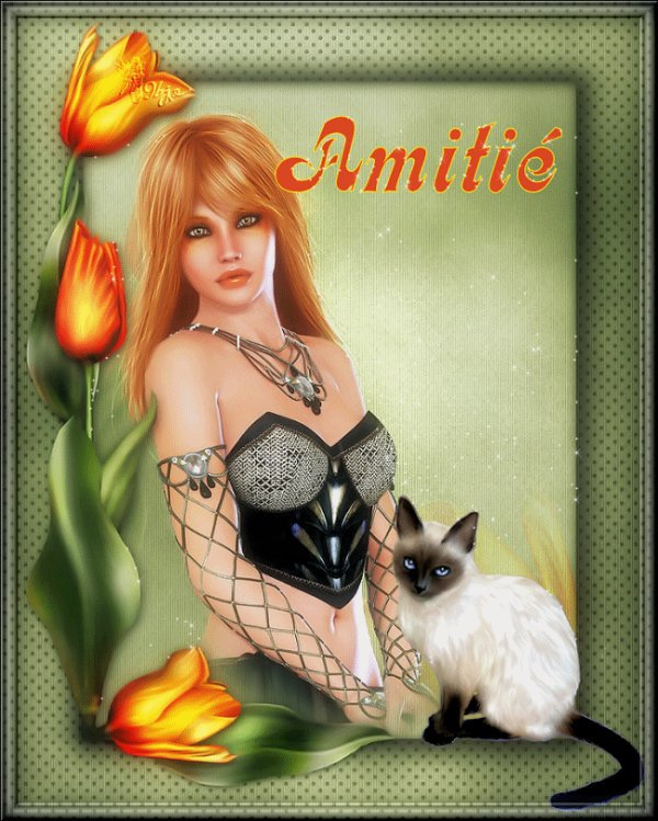MERCI MON AMIE ANNICK PA62 ET DANNY ET CHATONS 1973 ET CALINE 24