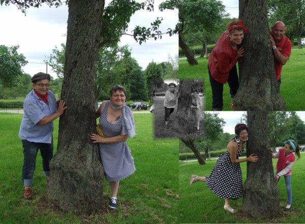 autour d'un arbre