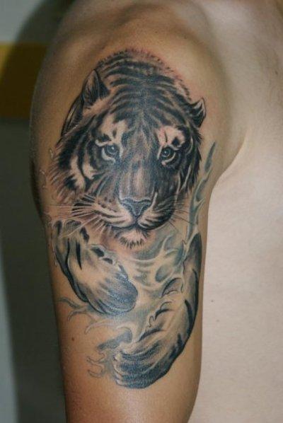 tatouage tigre blog de romain tisnedu82. Black Bedroom Furniture Sets. Home Design Ideas