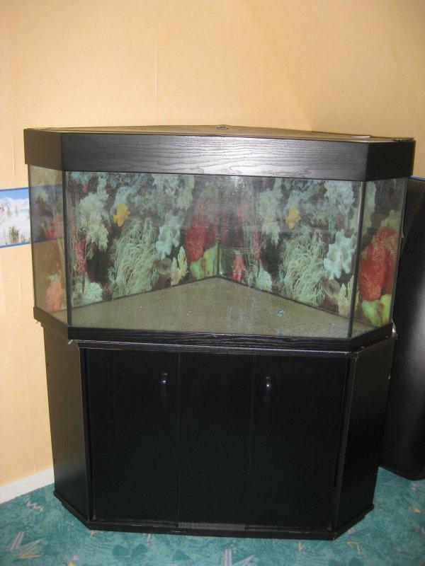 aquarium d 39 angle 200l meuble noir 2 porte vente de