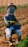 Photo de jardinieramateur17