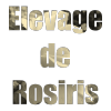 Elevage-de-Rosiris