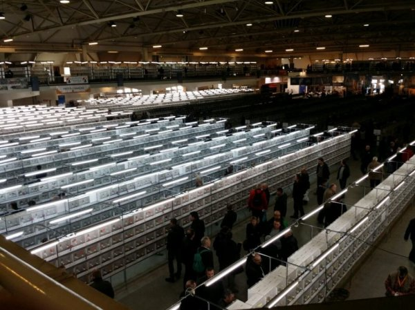 Salle mondial 2015, Rosmalen