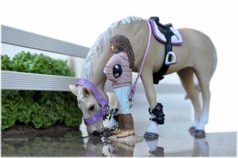 Blog de equideoschleich2 centre equestre des pommiers - Centre equestre jardin d acclimatation ...