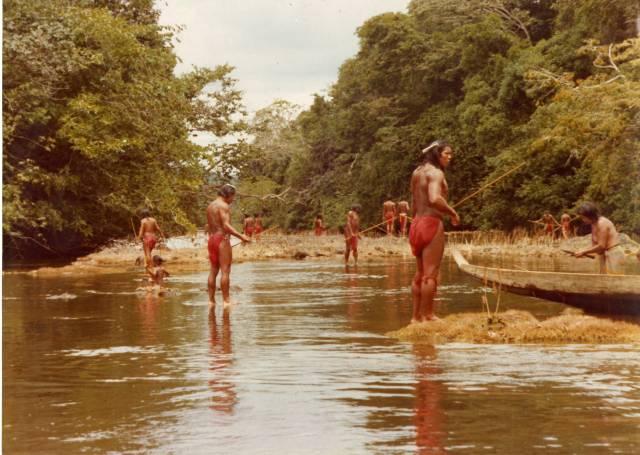 Vers 1975 sur l'Itany, Les WAYANA