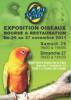 Expo 2011 - Club de l'Oiseau Bleu