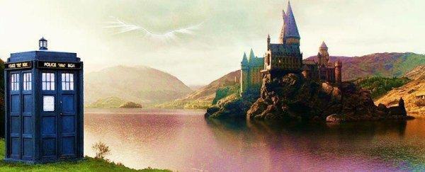 """Je te prends quand tu veux. Cette nuit si ça te convient."" HP Tome II"