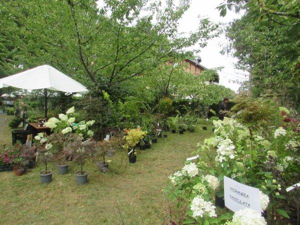 fleurs en seine  aux mureaux la f�te des plantes et du jardin