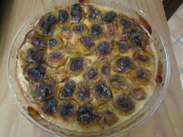 tarte et tarlettes aux prunes de mon jardin