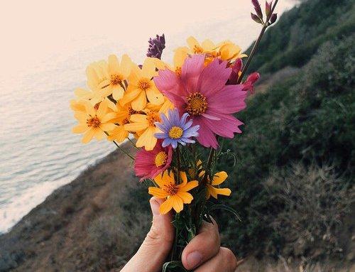 .  .    La chance c'est le bonheur qui arrive par hasard.   .  .