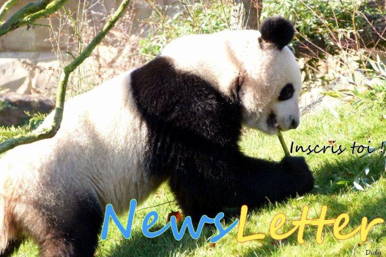 Pourquoi un blog sur Beauval ? - Ma NewsLetter - Tarifs 2015 & Plan du zoo, Horaires