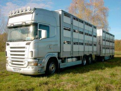 le camion remorque a dehosse a vendre varkens. Black Bedroom Furniture Sets. Home Design Ideas