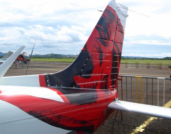 Salon Aéronautique Martinique > Piper PA-32-300 Cherokee