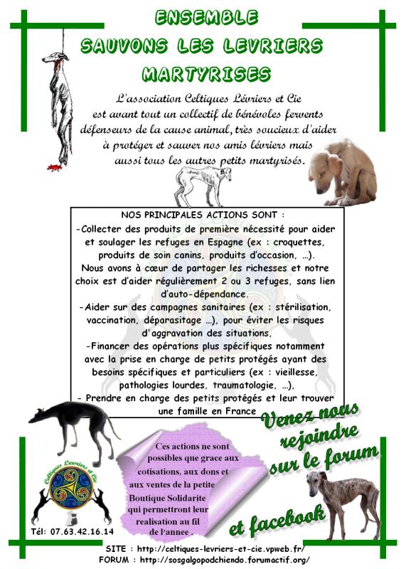 SOS POUR LES LEVRIERS D'ESPAGNE